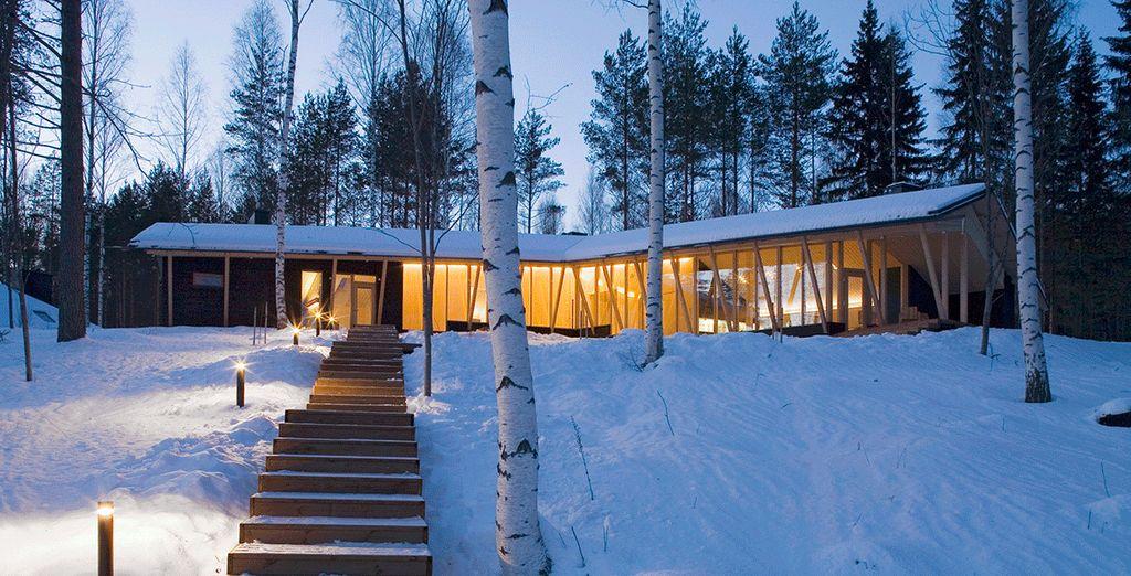 Vacances féeriques en Finlande