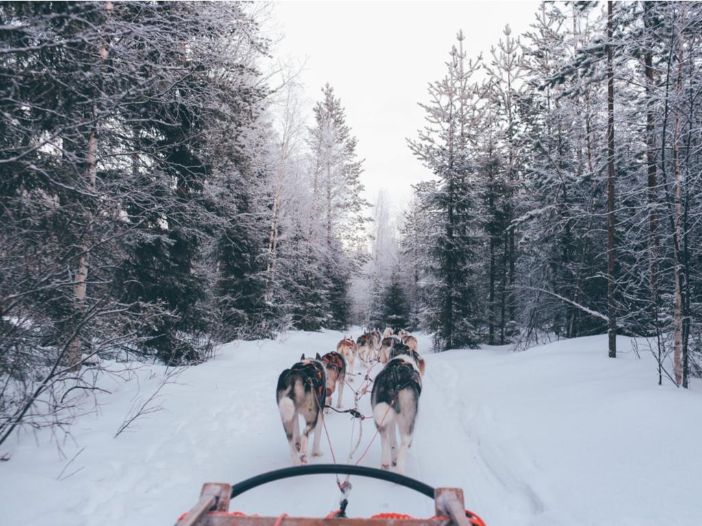 Un séjour magique en Finlande